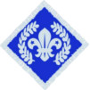 Chief Scouts Diamond Award