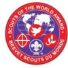 Badge of the Scouts of the World award